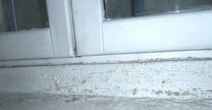 Seuil de portes-fenêtres infiltration d'eau