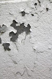 maison différents types désordres mur