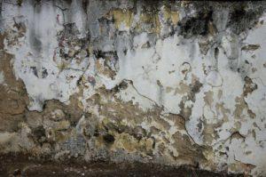 Traiter mur humide