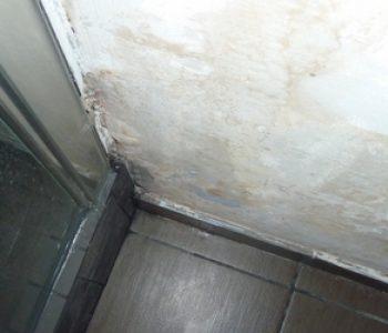 confort sanitaire dans les logements