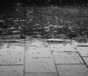 évacuation des eaux de pluie